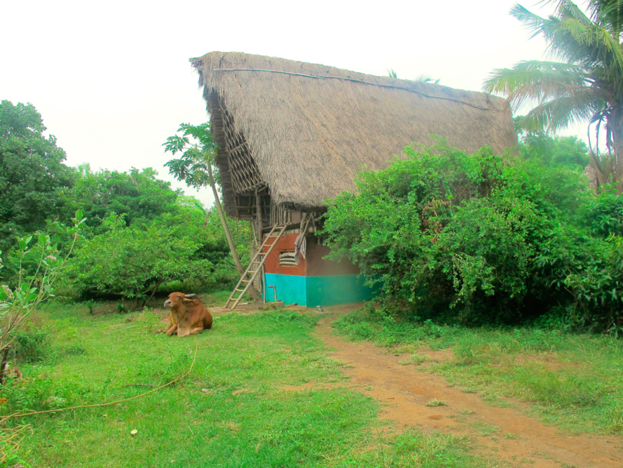 Auroville, Et la Mère créa l'Homme Nouveau